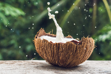 Coconut fruit and milk splash inside it on a background of a palm tree