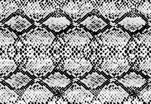 Snake skin pattern texture repeating seamless monochrome black & white. Vector. Texture snake. Fashionable print. Fashion and stylish background.