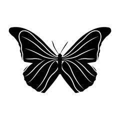 silhouette beauty butterfly style animal to the spring