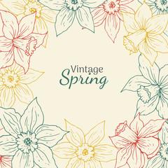 Daffodil vintage round frame. Hand drawn spring flower illustration