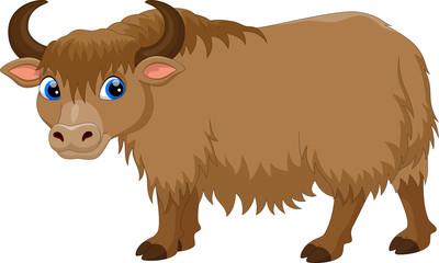 Cute yak cartoon