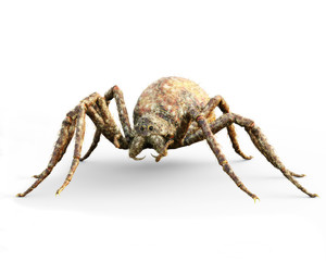 Enormous plague ridden spider isolated on a white background . 3d rendering