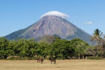 Chevaux devant le volcan Concepción, Ometepe, Nicaragua