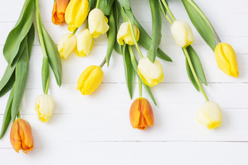 yellow tulips on wooden background