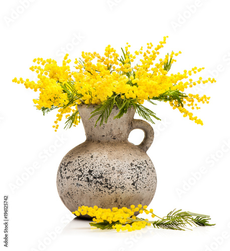 Yellow Flowers Mimosa In A Vase On A White Background Stockfotos