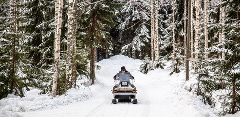 A man is riding a snowmobile in the winter forest