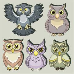 Set of color owls