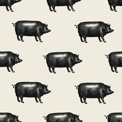 Seamless farm vector pattern. Graphical pig silhouette, hand drawn vintage illustrations. Retro farm animals background.
