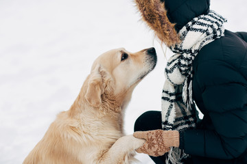 Image of labrador giving paw to woman in black jacket on winter