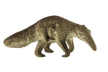 Figure of the anteater