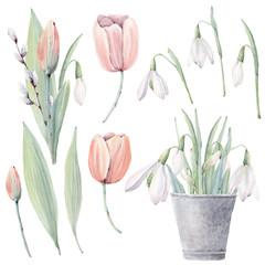 Watercolor flowers set in vintage style.