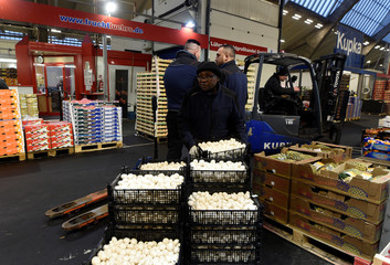 A worker carries some mushrooms at the wholesale fruits and vegetables market in Hamburg