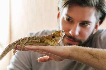 Man holding Bearded Agama in his hand