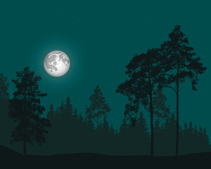 vector illustration of coniferous forest under the sky with stars and full moon