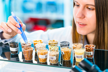GMO research of cereals