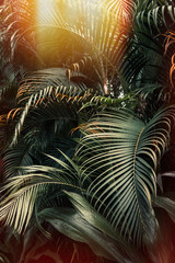 Printed kitchen splashbacks Palm tree Deep dark green palm leaves pattern with bright orange sun flare effect. Creative layout, toned, vertical
