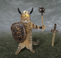 The cat in a viking helmet holds a mace and a shield. He is on the battlefield.