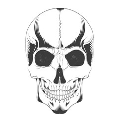 vector illustration of a human skull sketch in Gothic style. design t-shirts, covers, posters, tattoos and others