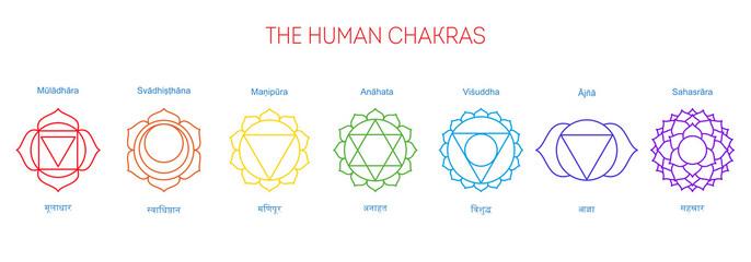 Seven chakras, their English and Sanskrit name. Muladhara, svadhisthana, manipura, anahata, vishuddha, ajna, sahasrara. Poster, illustration, yoga, Buddhism, Hinduism. Spiritual practice