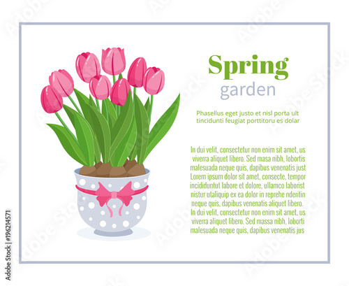 Flower Brochure Design Backgrounds Vector Templates Of Banners Or Business Cards
