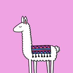 Hand drawn white llama with patterned fringed blanket. Cute furry llama animal vector illustration on violet background.