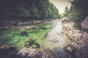 Foto op Aluminium Rivier Mountain river in the green forest