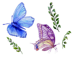 Watercolor painting set. Beautiful blue and purple butterflies, green twigs with small leaves. Isolated on white background.