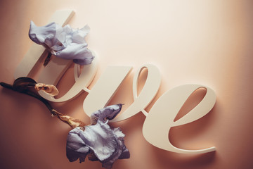 plastic letters LOVE with fllowers