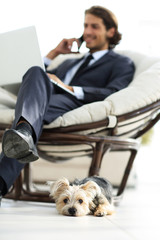 Blurred image of a businessman sitting in a chair and his little pet