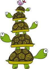 Stacking turtles and bird
