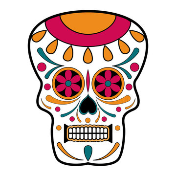 Floral ornamente head skull. Day of the dead