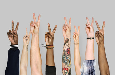 Hand gestures isolated