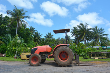 Red tractor on a field in Rarotonga Cook Islands