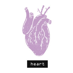 Vector hand drawn illustration. Heart body. Idea for poster, postcard, design.