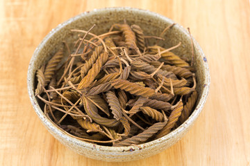 Dried brown fruit of Indian screw tree, compound twisted pod with many medicinal properties