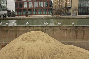 Tas de sable dans une barge avec oiseaux