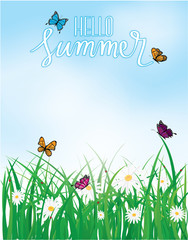 Hello Summer, Butterfly flying above the grass with flowers, Spring, Summer background