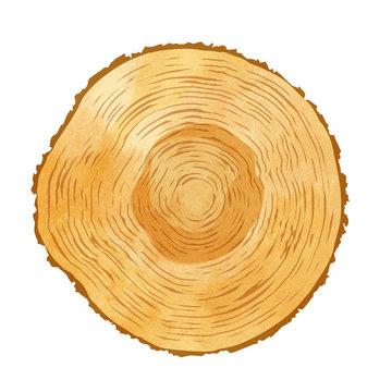 木目 水彩イラスト
