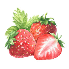 Hand drawn watercolor strawberry bunch with green leaves, delicious food art isolated on white background.