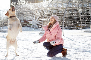 Woman playing with cute dog outdoors on winter day. Friendship between pet and owner