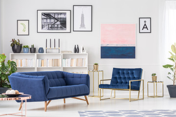 Navy blue sophisticated living room