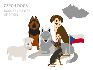Dogs by country of origin. Czech dog breeds. Infographic template