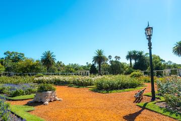 Palermo rose garden