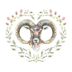 Watercolor portrait of ram with a wreath of wildflowers.