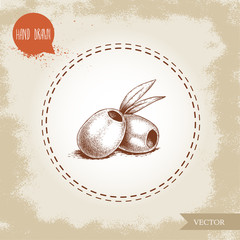 Hand drawn sketch style olives without seed. Olive oil and healthy food vector illustration on vintage looking background.
