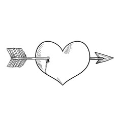 Vector cartoon heart pieced by Cupid arrow. Black and white version. Heart pierced by arrow, symbol of love, romance and passion, marriage icon. Sketch style illustration isolated on white background.