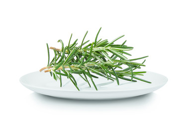 Rosemary in white plate on white background