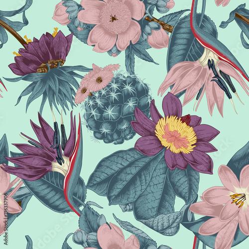 Заказать цветы в векторе фон, где купить дешевые растения для аквариума