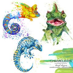 Chameleon  hand drawn watercolor illustration set.