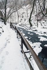 Winter landscape stream